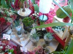 Greenhouse Florist Sheffield 1